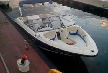 Motorboat Bayliner 175 photo